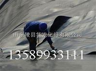 供应HDPE防水板厂家13589933111