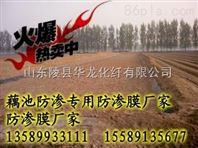 供应藕池防渗膜厂家13589933111